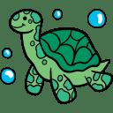 Coco Tortoise's health corner